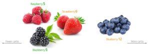Snack Berries